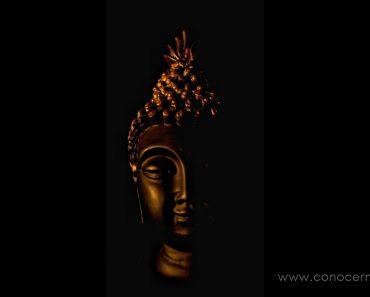 10 Hábitos de los monjes budistas: Difíciles de adoptar, pero que cambian la vida cuando lo haces