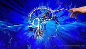 El daño en cierta parte del cerebro está relacionado con el extremismo religioso, según los científicos 2