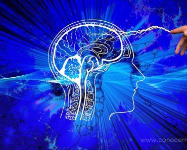 El daño en cierta parte del cerebro está relacionado con el extremismo religioso, según los científicos 1