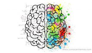 10 ejercicios simples para desarrollar ambos lados del cerebro