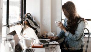 Las 3 mejores carreras para introvertidos