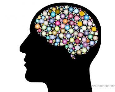 15 Hábitos cotidianos de las personas con una memoria impresionante