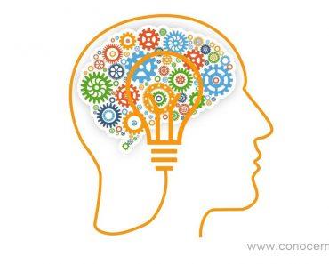 10 Cosas sorprendentes sobre tu cerebro, apostamos a que no las sabías