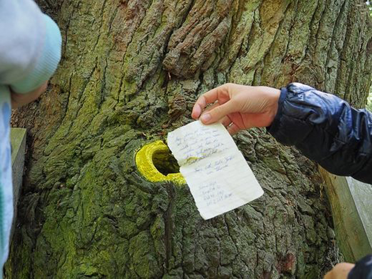 Este árbol en Alemania podría ayudarte a encontrar a tu alma gemela