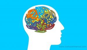 Esta es la verdadera razón por la que tienes un cerebro diestro o zurdo, y no tiene nada que ver con la creatividad