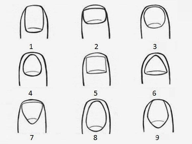 La forma de tus uñas puede revelar algo sobre tu personalidad 1