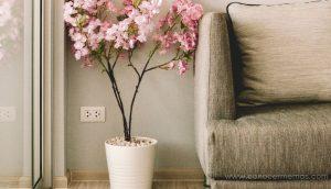 7 ideas para crear un ambiente de paz en tu hogar