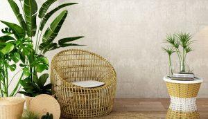 Feng Shui: 11 plantas de la suerte y dónde ponerlas en tu casa